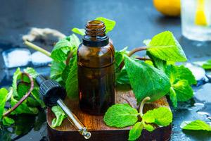 Les pouvoirs de l'huile essentielle de menthe poivrée : présentation de 21 de ses bienfaits pour la santé
