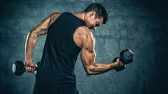 Não Deixe de Fazer o Treinamento de Força