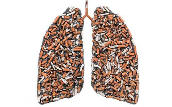 인체를 썩게 하는 흡연