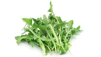 Quelles sont les vertus des feuilles de pissenlit ?