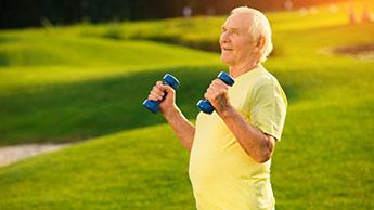 Les muscles sont difficiles à développer, et vite perdus