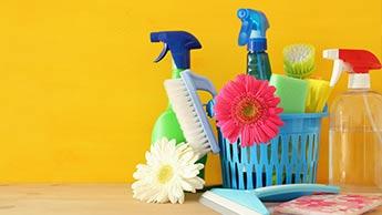 春のお掃除