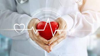 심장을 들고 있는 의사