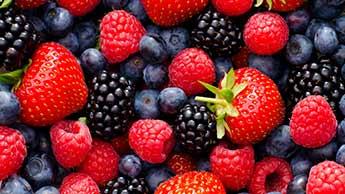 Quelles sont les meilleures variétés de petits fruits ?