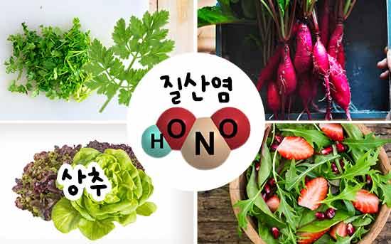 건강한 식이 아질산염을 풍부하게 함유한 식품들