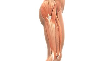 Упражнение при синдроме подвздошно-большеберцового тракта