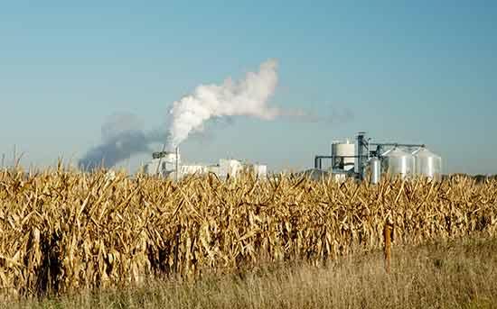 산업형 농업