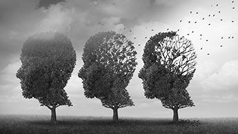 Eine ketogene diät schützt vor der Alzheimer-krankheit, indem sie das gehirn gesund und jugendlich erhält (Teil 1)