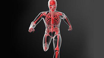 Santé des os