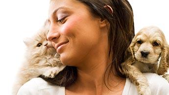 Amantes de Animais
