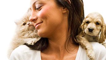 Les surprenantes différences entre amoureux des chiens et amoureux des chats