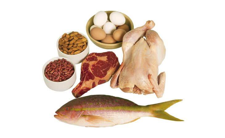 蛋类和肉类中的胆碱可能影响幼年到成年期间的基因表达