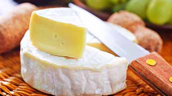 Les fromages au lait entier offrent de nombreux bienfaits pour la santé, et permettent notamment de perdre du poids