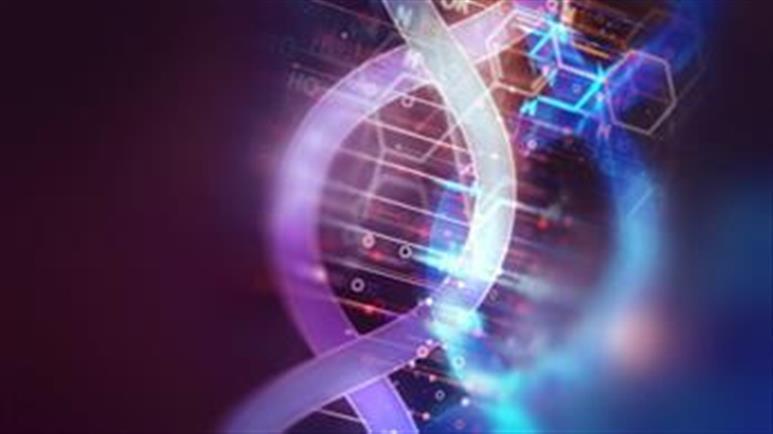 воздействие ЭМП на молекулы ДНК