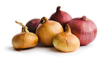 benefícios para a saúde das cebolas