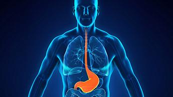 15 natürliche Heilmittel für die Behandlung von Säure-Reflux und Geschwüren