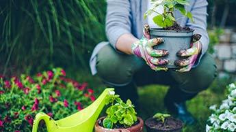 Comment le Jardinage Peut Améliorer Votre Santé, votre Condition Physique, votre Humeur et votre Alimentation