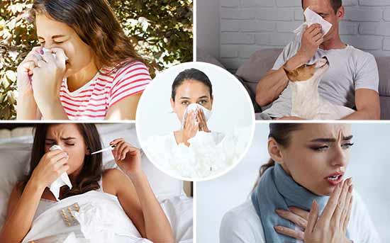 如何强化免疫系统以预防感冒