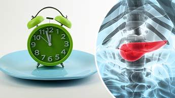 絶食で膵臓が再生する