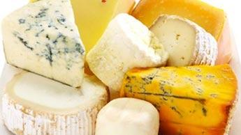Queijo - Uma Superpotência Nutricional que Pode Ajudar a Proteger seu Coração, Cérebro e Ossos