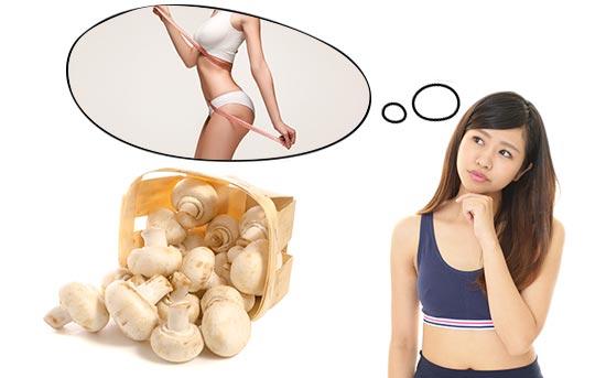 비만에 도움을 주는 버섯