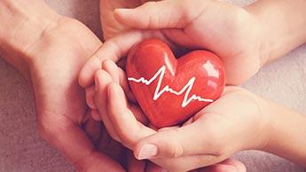 心臓系の健康