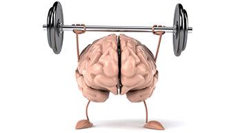Faire travailler le cerveau