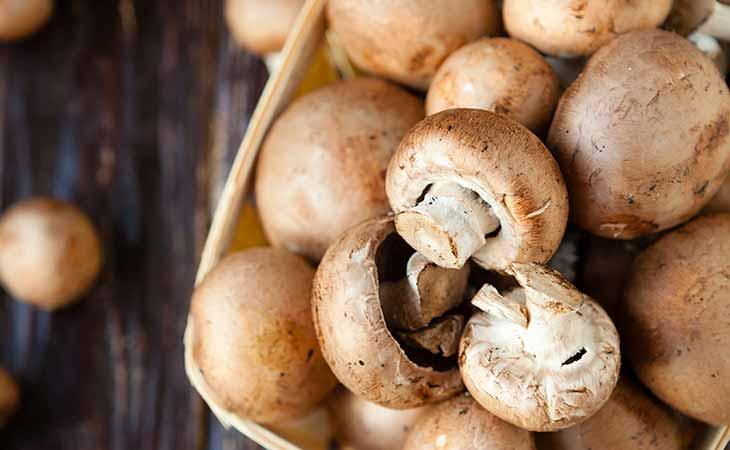 食用蘑菇的健康功效