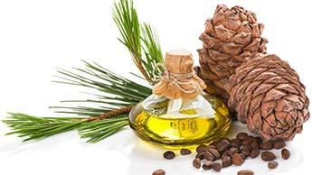 L'huile essentielle de cèdre rouge : les prodiges curatifs du cèdre