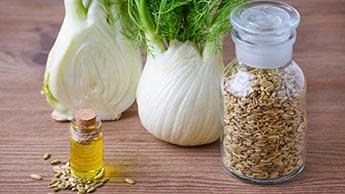 Que Peut Apporter l'Huile Essentielle de Fenouil Doux à Votre Santé?