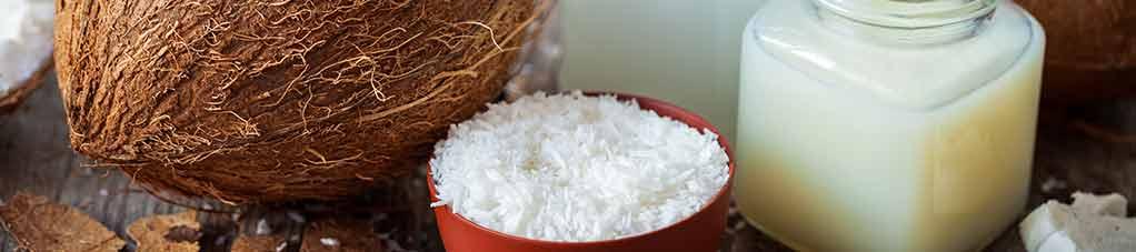 receitas saudáveis com coco