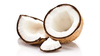 Para Que Serve o Coco?