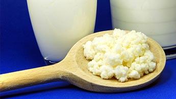 «Хорошие кишечные бактерии» могут помочь в борьбе с ожирением