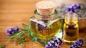 Óleo de Lavandin: Benefícios Promovidos Por Este Óleo Essencial com Odor Adocicado