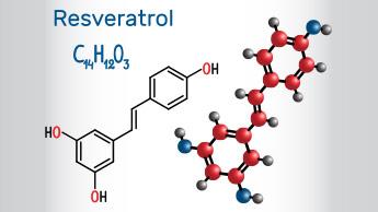Le resvératrol pousse les cellules indésirables à s'auto-détruire