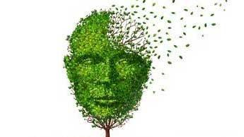 korzyści dla mózgu płynące z aktywności fizycznej