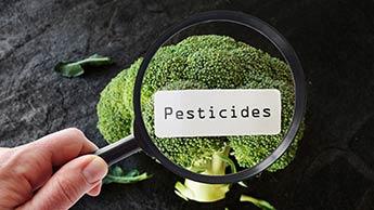 Melhore sua Saúde Evitando Pesticidas e Herbicidas