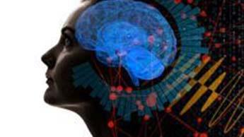 レッグエクササイズ 健康な脳