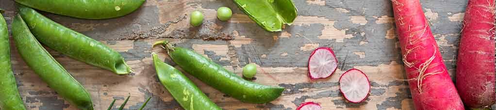 콩 껍질, 무를 곁들인 라임 샐러드
