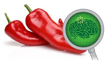 Hält eine Paprika am Tag Parkinson fern?