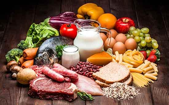 通过食物搭配为宠物提供均衡的营养