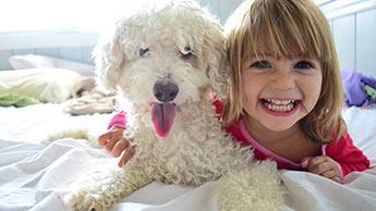 Cães são os Melhores, mas Estes Outros Animais de Estimação Também Ajudam a Reduzir a Ansiedade