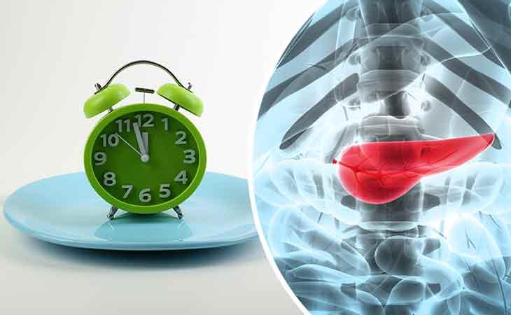 禁食帮助胰腺再生