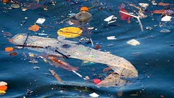 O Oceano Pode em Breve Conter Mais Plástico do que Peixes