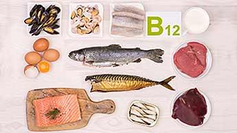 fontes de vitamina B 12