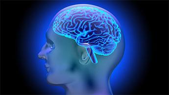 vitamina B para o cérebro