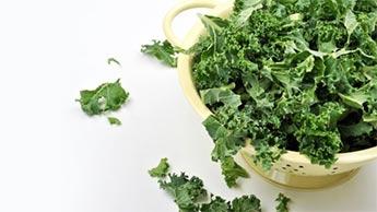 Les bienfaits du chou kale pour la santé