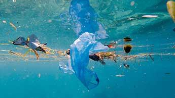 Meeresverschmutzung durch Kunststoff