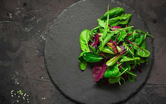 녹색 잎 채소