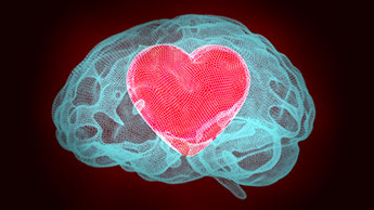 coração dentro de um cérebro